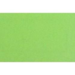 Licra 4679 Verde Fluor