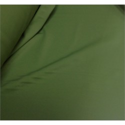 Licra verde musgo
